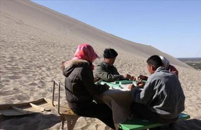 在沙漠搓麻将